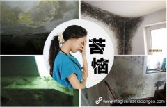 Extreme excellent wall cleaning ability melamine sponge