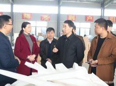 Henan Vice-governor Wang Tie Come Here To Inspect Enworld Melamine Sponge Manufacturer